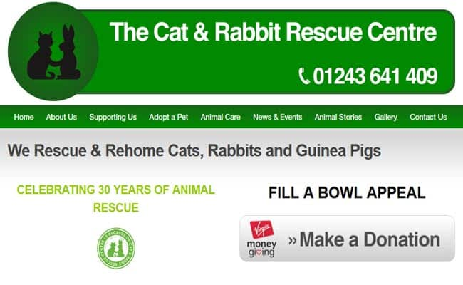 The Cat and Rabbit Rescue Centre, Chichester