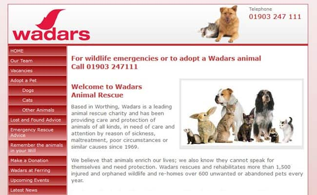 Wadars Animal Rescue, Worthing