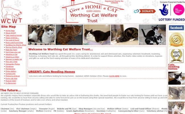 Worthing Cat Welfare Trust, Worthing