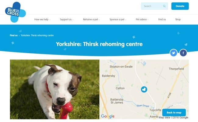 Blue Cross Rehoming Centre, Thirsk
