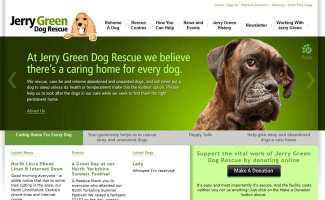 Rescue Homes For Dogs In Yorkshire
