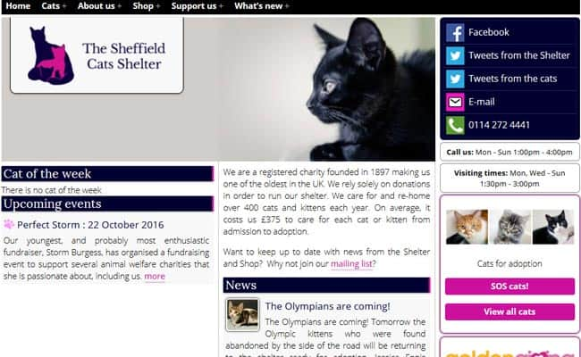 Sheffield Cat Shelter, Sheffield