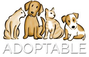 adoptable-foot-logo
