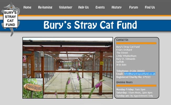 Bury Stray Cat Fund